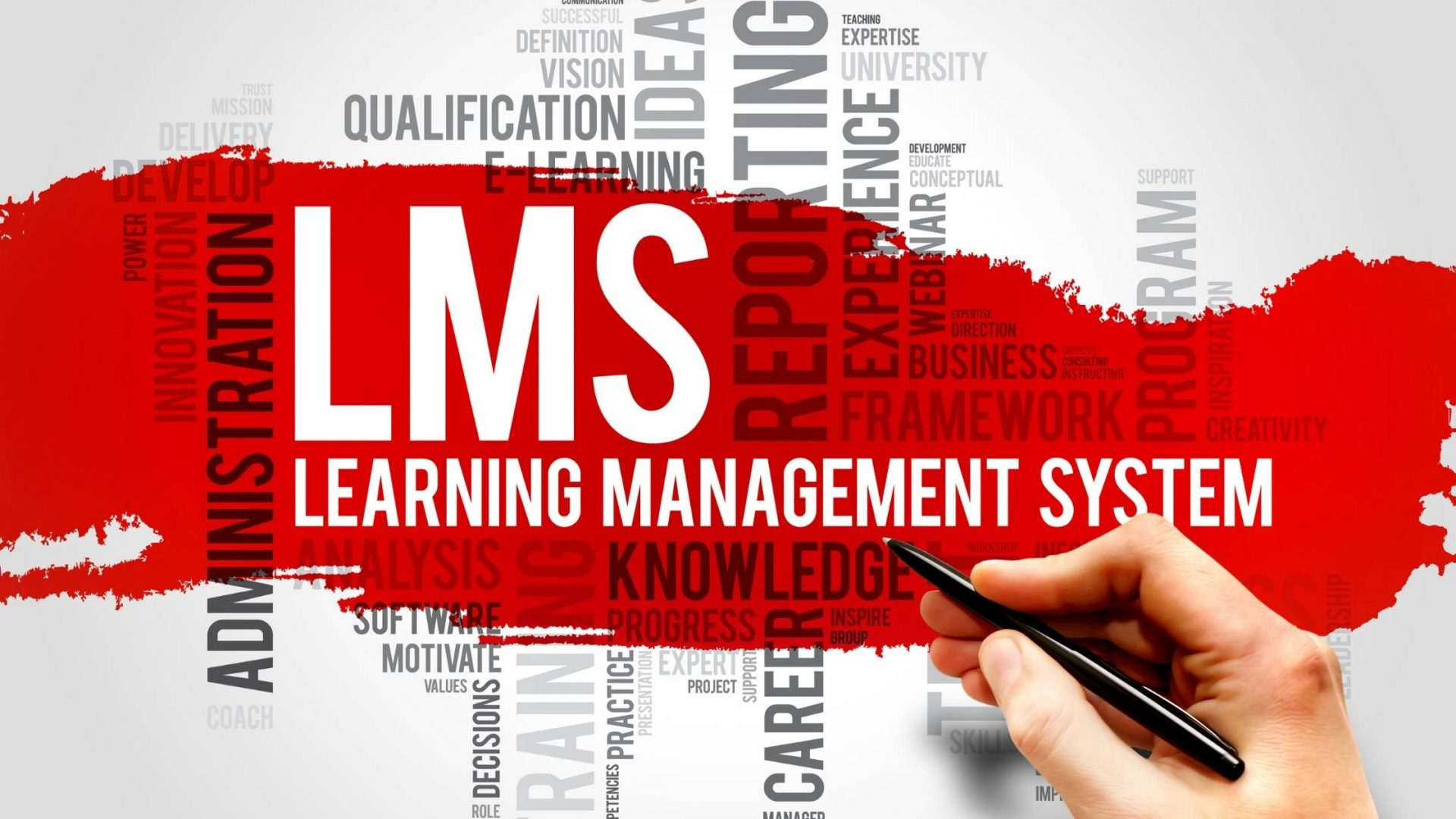 Readymade Vs Learning Management System: What Would You Prefer?